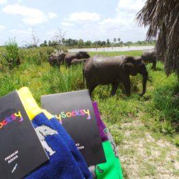 elefántos zokni