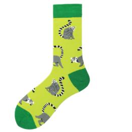 csíkosfarkú majmos zokni
